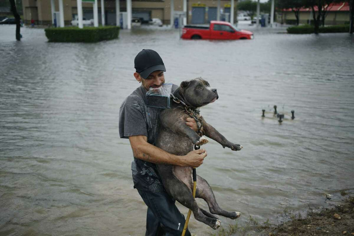 A man carries a pitbull after wading through floodwaters from Hurricane Harvey in Houston, Texas, U.S., on Tuesday, Aug. 29, 2017. Estimates for damages caused by Hurricane Harvey are climbing with the storm poised to regain strength in the Gulf of Mexico before crashing back on land. Photographer: Luke Sharrett/Bloomberg