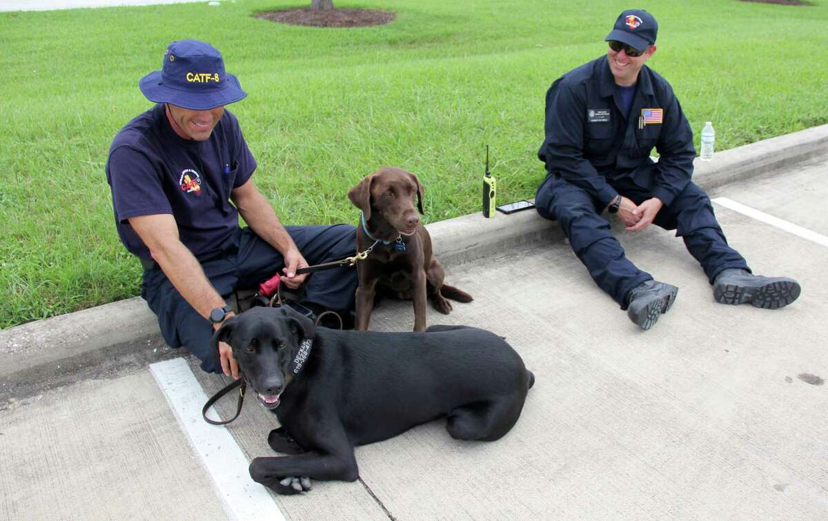 San Diego Urban Search & Rescue Task Force 8 members Ned Vander Pol (left), and Todd Nelson, keep the team's search and rescue dogs Decker (left) and Haley company while their team members are out to lunch in the Cy-Fair area on Aug. 30.