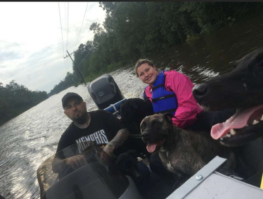 More than 30 dogs trapped in a no-kill shelter were saved from devastating floods in Beaumont caused by Hurricane Harvey. Photo: Shanna Davis