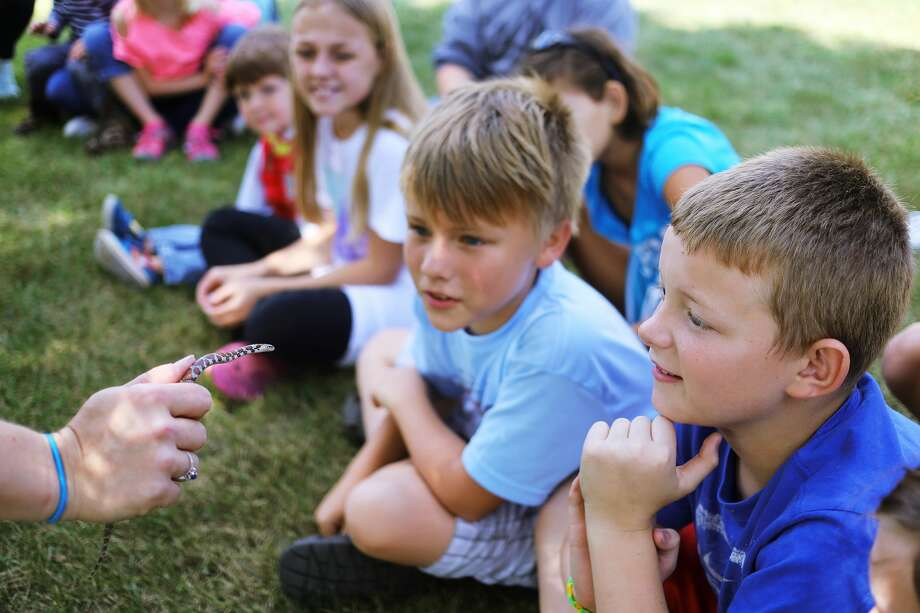 Anden VanHouey of Bay City, 10, right, and Silas VanWert of Bay City, 10, center, check out a milk snake as Michelle Fournier of the Chippewa Nature Center shows a group of kids a handful of snakes during an educational program on Thursday, August 31, 2017 at the Discovery Preserve in Bay City. Photo: (Katy Kildee/kkildee@mdn.net)
