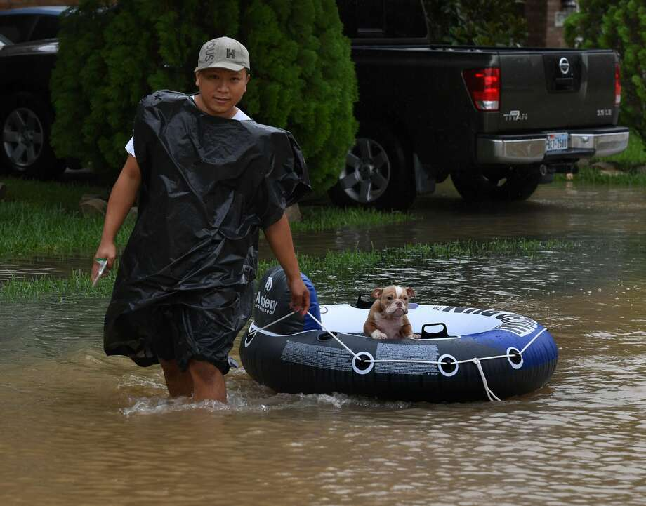 John Tuan returns to rescue his dog who was left in his flooded house in the Clodine district after Hurricane Harvey caused heavy flooding in Houston, Texas on August 29, 2017. Floodwaters have breached a levee south of the city of Houston, officials said Tuesday, urging residents to leave the area immediately. / AFP PHOTO / MARK RALSTON        (Photo credit should read MARK RALSTON/AFP/Getty Images) Photo: Getty Images