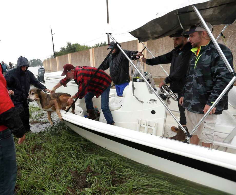 Joe Henley tries to get his dog, Bubba, out of the boat of Josh Mtanyos, a Cajun Navy volunteer, just north of 1960,   Tues., Aug. 29. Photo: Karen Warren, Staff Photographer / @ 2017 Houston Chronicle