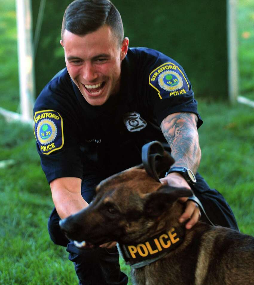 Stratford Police Officer Stephen Santoro reaches to embrace his patrol K-9 Logan after Logan rans through a skills course during a meet & greet for the department's three new K-9's held at Riverview Bistro in Stratford, Conn., on Friday Sept. 1, 2017.