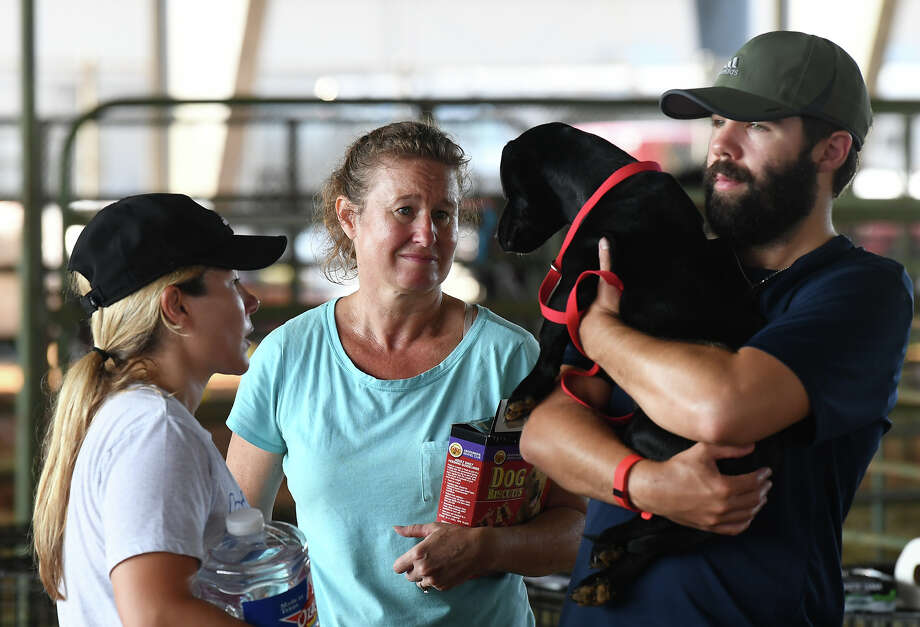 Michelle Lichtenberg, middle, looks Saturday at a dog that was rescued and dropped off at Ford Park's temporary animal shelter in Beaumont. The shelter is taking in animals displaced by Hurricane Harvey and handing out animal food. Erika Pearce and Nick Peacre from Annapolis are also pictured. Photo taken Saturday, September 02, 2017 Guiseppe Barranco/The Enterprise Photo: Guiseppe Barranco, Photo Editor / Guiseppe Barranco ©