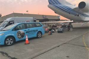 Supplies are being packed onto a private plane and readied for the trip to Austin, Texas.