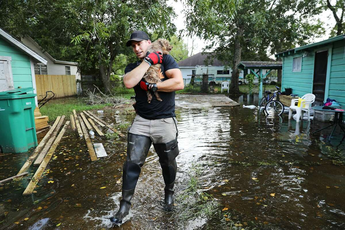 ORANGE, TX - SEPTEMBER 05: Matt Murray, a volunteer with an animal rescue organization, carries a small dog he found abandoned beside a flooded home on September 5, 2017 in Orange, Texas.Thousands of pets and livestock have either run away or been left to fend for themselves after Hurricane Harvey ravaged parts of the state of Texas. (Photo by Spencer Platt/Getty Images)