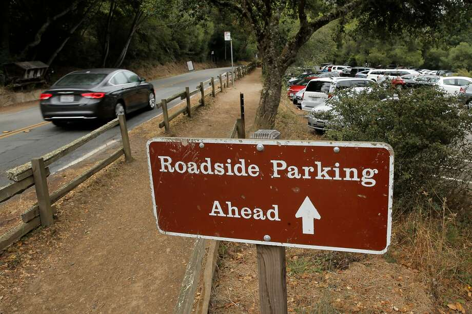 With the main parking lots full, visitors must search for parking along Muir Woods road at Muir Woods National Park. Photo: Michael Macor, The Chronicle