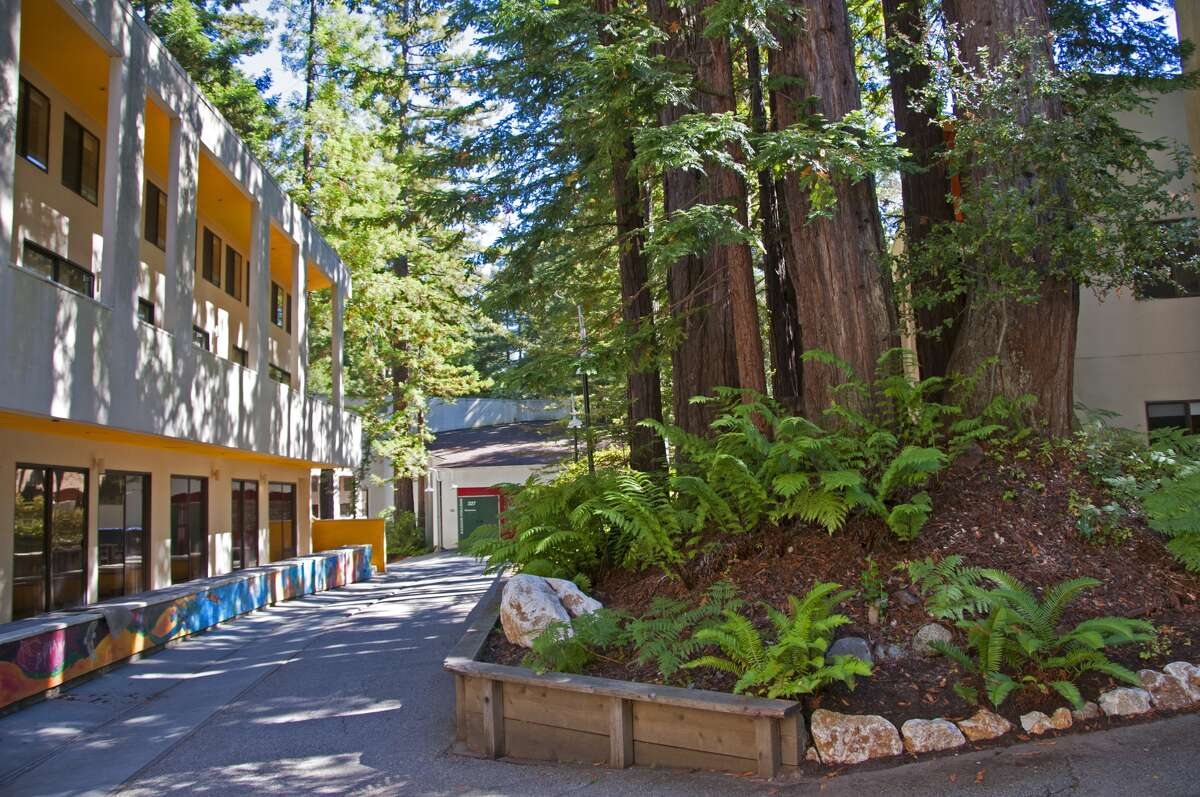 GALLERY: The most liberal colleges in the U.S., according to Niche 1. University of California, Santa Cruz Acceptance rate: 58% Tuition: $14,020 (in-state), $42,034 (out-of-state) SAT range: 1060-1290