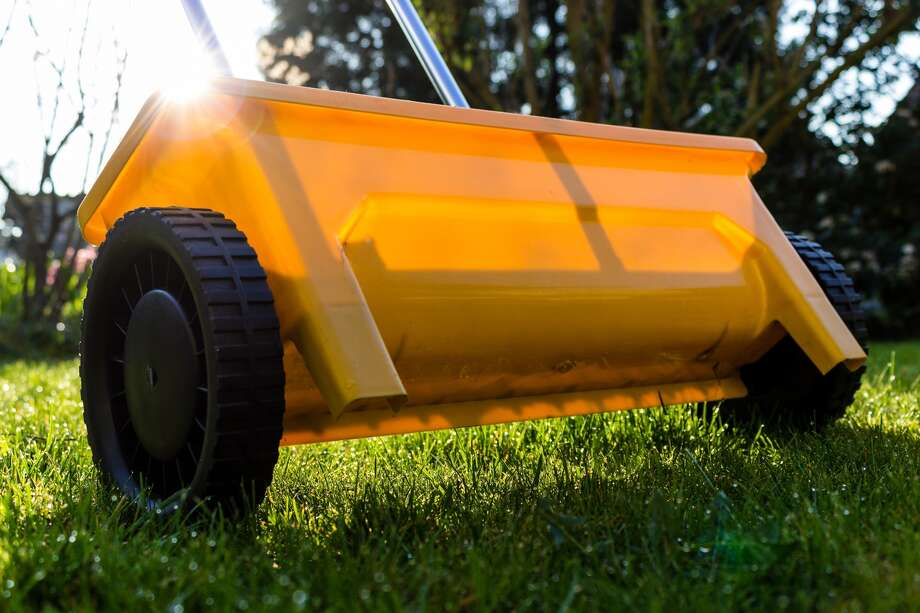 Fall lawn fertilization is the first step in growing a healthy lawn next year. Photo: For The Edge