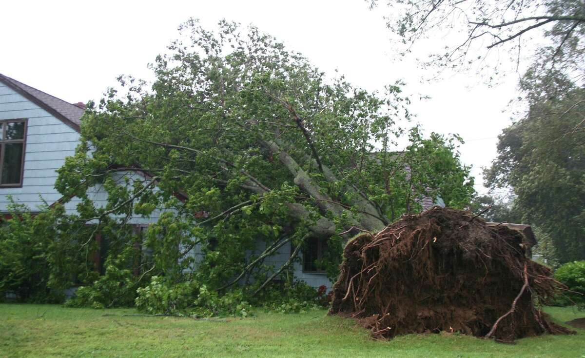 A tree near the tip of Shippan Avenue was uprooted by Hurricane Irene in Stamford, Conn. Sunday, Aug. 28, 2011.