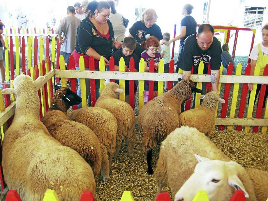 The petting zoo at the fair. Photo: Photo Courtesy Of North Haven Fair