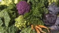 Walmart, H-E-B, Trader Joe's among stores listed in massive vegetable recall - Photo