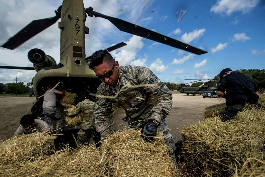 Volunteers and members of the Texas Army National Guard pack Chinook helicopters full of hay to deliver to cattle stranded by Tropical Storm Harvey Tuesday, Sept. 5, 2017 at Hamshire-Fannett High School in in Hamshire. The 2-149th general support aviation battalion has delivered more than 75,000 pounds of hay to flooded ranches since Monday. ( Michael Ciaglo / Houston Chronicle) Photo: Michael Ciaglo, Staff / Michael Ciaglo