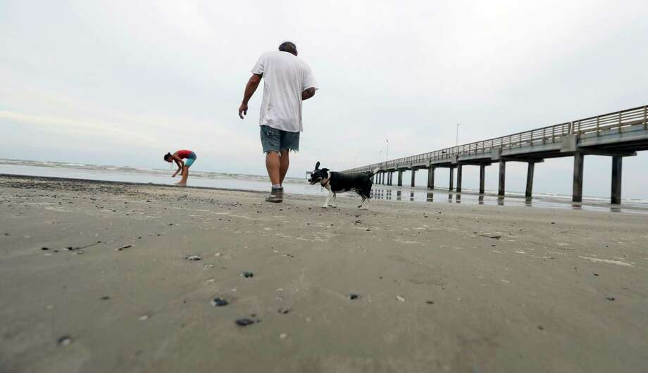 In this Sept. 2, 2017, photo, Bob Campbell and his dog Bellas visit the beach in Port Aransas, Texas, for the first time following Hurricane Harvey making land fall. Rockport and Port Aransas bore the brunt of one of the strongest hurricanes to hit the United States. (AP Photo/Eric Gay) Photo: Eric Gay, STF / Copyright 2017 The Associated Press. All rights reserved.