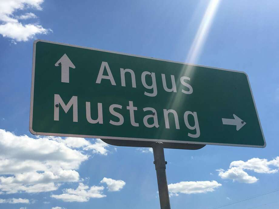 The Town of Mustang, Texas is on the market for $4 million. Mustang lies south of Dallas in Navarro County. Photo: J Elmer Turner Realtors, Inc.