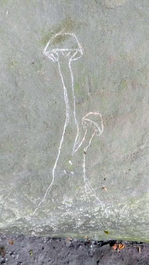 The DNR and the Saginaw Chippewa Indian Tribe of Michigan ask that anyone with information concerning the individuals who defaced the Sanilac Petroglyphs call or text the DNR Report All Poaching (RAP) hotline at 800-292-7800. Photo: Submitted Photo