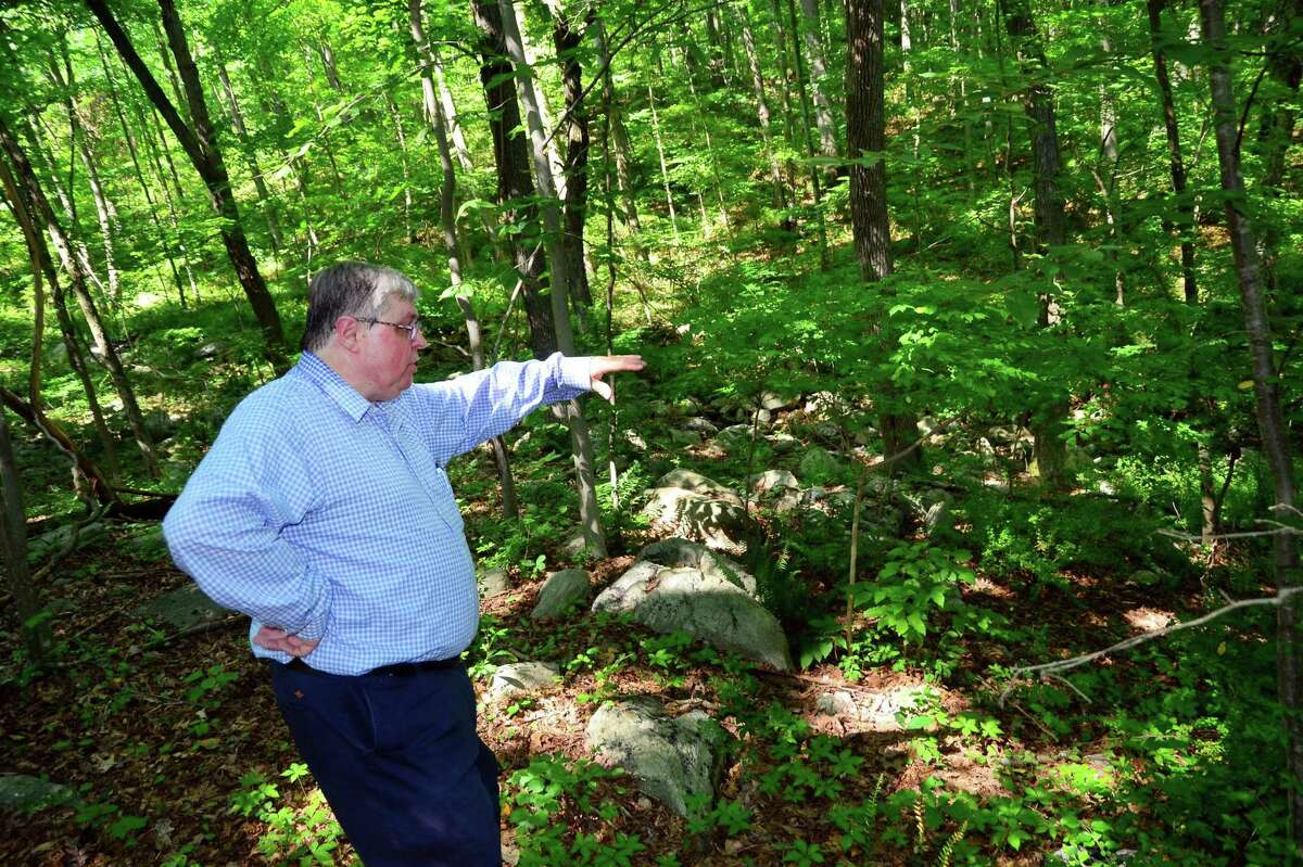 Greg Tetro, of Save Our Shelton, points out some of the area that may be developed during a tour in the woods at the end of Mill Street in Shelton, Conn. on Wednesday August 9, 2017. Tetro and other members of SOS are against the proposed Towne Center at Shelter Ridge. The pre-colonial Paugussett Trail runs through the woods and a portion of it would be destroyed. The development, which is planned to be 375 apts, a retail outlet, medical and professional offices, is tied up in court.