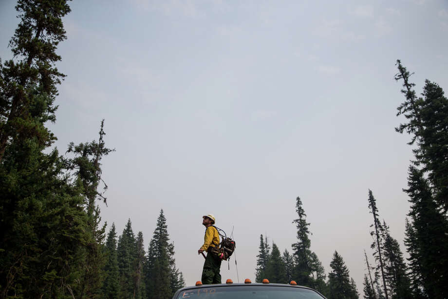 Engine captain Boomer Martinson watches the tree tops for flare ups at the Norse Peak Fire, northeast of Mt. Rainier, on Friday, Sept. 8, 2017. Photo: GRANT HINDSLEY, SEATTLEPI.COM / SEATTLEPI.COM