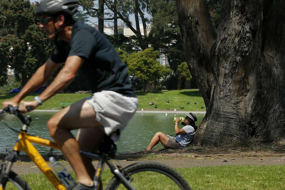 Lisa Hauptman of Santa Rosa hydrates and takes cover from the sun under a tree at Golden Gate Park on Friday, Sept. 1, 2017, in San Francisco, Calif. Warm weather is expected to return to the region on Sunday, Sept. 10, 2017. Photo: Santiago Mejia, The Chronicle