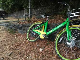 Low helmet usage reported among Seattle bike-share users