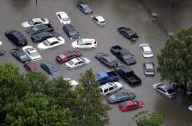 Trust your nose No one knows how many of the hundreds of thousands of cars that suffered flood damage from Hurricanes Harvey and Irma will show up for sale.  One way to tell if a car suffered flood damage is the smell test. Mold and mildew grow fast in a flooded car, so if the interior has a musty aroma, take a pass on the car.