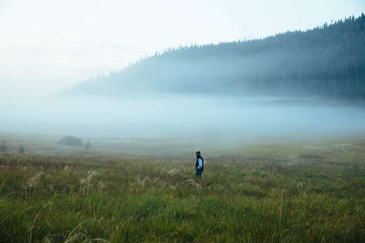 Perry Norris, executive director of Truckee Donner Land Trust, looks out on to the meadows of Carpenter Valley near Truckee Calif. Wednesday, September 6, 2017.