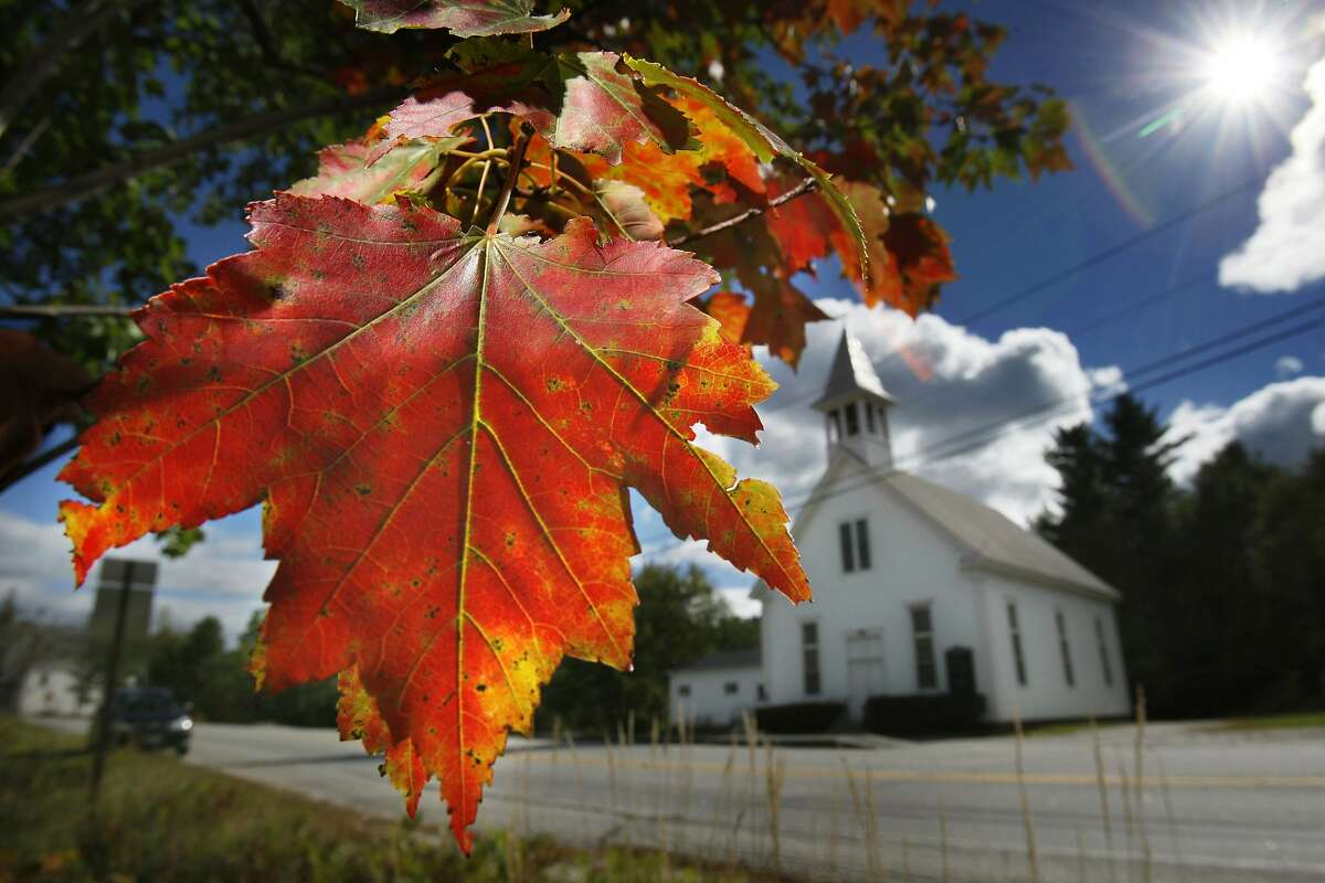 FILE - In this Sept. 17, 2010 file photo, a maple tree shows its fall colors in Woodstock, Maine. New England's 2017 fall foliage forecast is very favorable for leaf peeping. (AP Photo/Robert F. Bukaty, File)