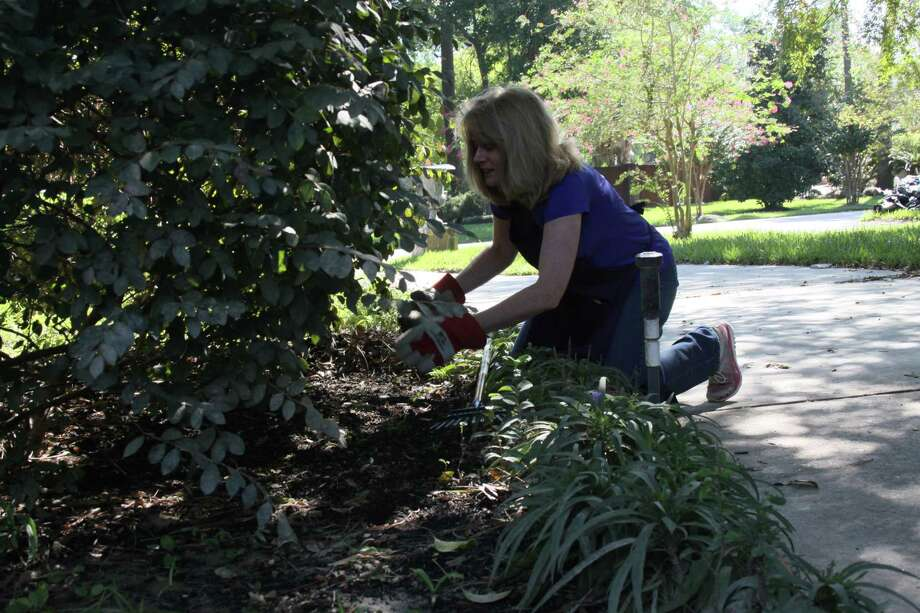 Diane Simmons, founder of the Hurricane Harvey Garden Brigade, pulls weeds out of a flower bed. She said that while her group is small, she hopes more people will help volunteer to clean up more gardens. Photo: Mayra Cruz