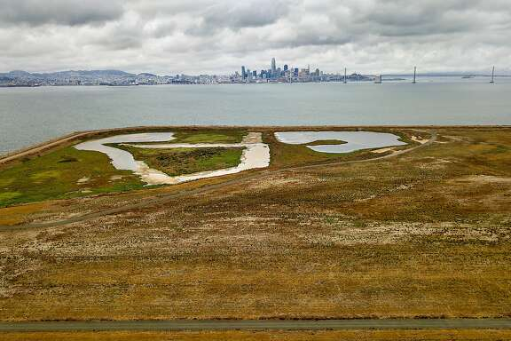 Grasslands cover an edge of Alameda Point, former site of the Naval Air Station Alameda, on Wednesday, Sept. 13, 2017, in Alameda, Calif. Resilient by Design Bay Area Challenge participants are examining the site as part of their efforts to find adaptations to climate change.