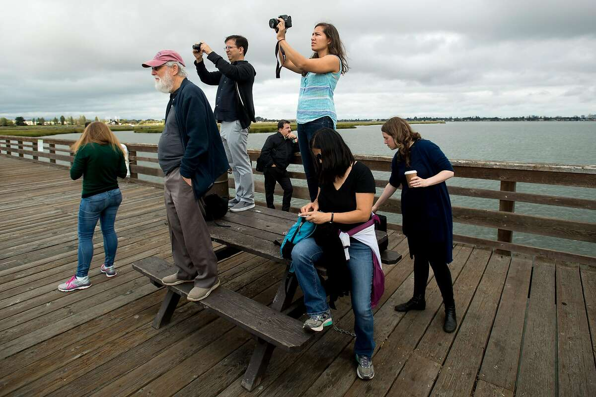 Marisa Villareal, a program manager with Resilient By Design Bay Area, takes photos during a tour of Martin Luther King Jr. Shoreline in Oakland, Calif., on Wednesday, Sept. 13, 2017.