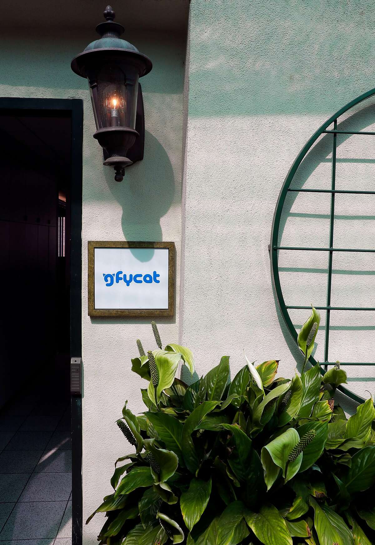 The offices of Gfycat, on Thursday September 14, 2017, in Palo Alto, Ca. Gfycat was founded in order to upgrade the GIF viewing experience to the 21st century.