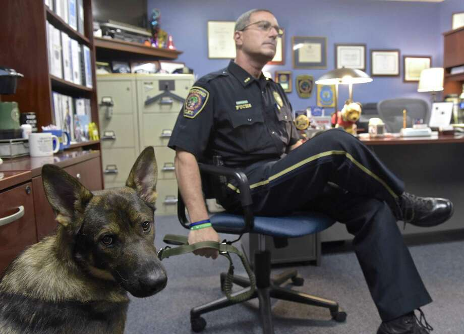 Redding Police Chief Doug Fuchs and Kato, a seeing eye dog he has been raising from a pup. Fuchs has been raising and training Kato for the Fidelco Guide Dog Foundation. Friday afternoon, September 15, 2017, in Redding, Conn. Photo: H John Voorhees III / Hearst Connecticut Media / The News-Times