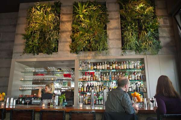 New Maven chef keeps the party going - SFChronicle com