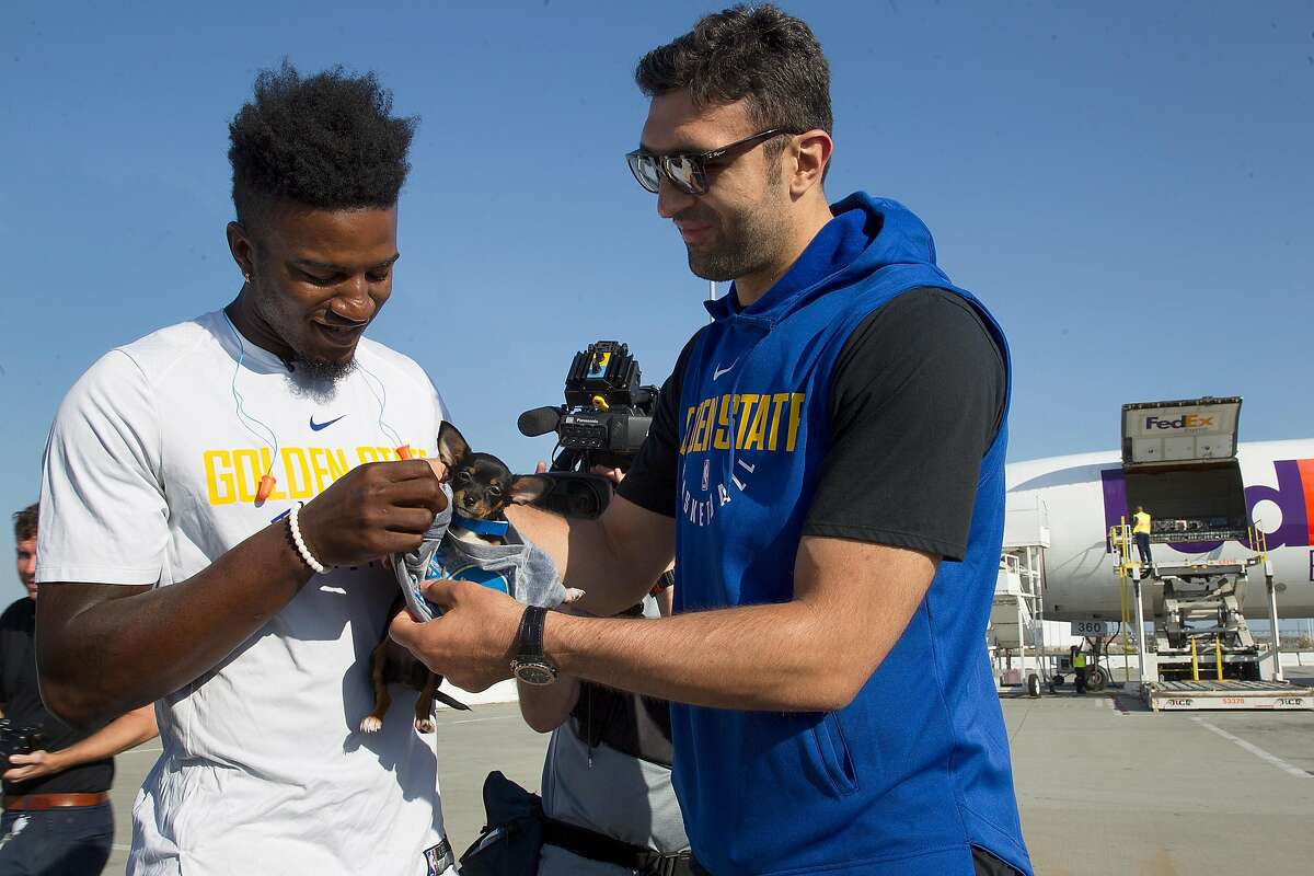 Warriors Jordan Bell (left) and Zaza Pachulia (right) help aid the delivery of more than 150 dogs and cats transported to no-kill shelters at FedEx in Oakland airport on Friday, September 15, 2017, in Oakland, Calif.