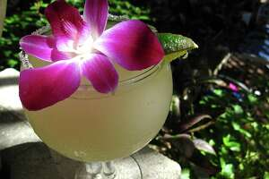 "La Fogata's ""Award Winning Margarita."" The restaurant has opened a second location at The Dominion."