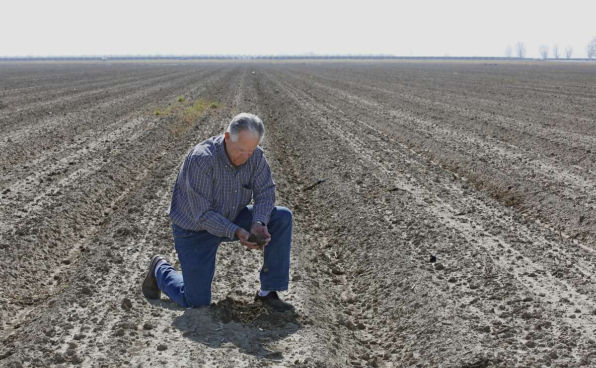 In this Thursday, Feb. 25, 2016 photo, Mike Stearns, chairman of the San Luis & Delta-Mendota Water Authority, checks the soil moisture on land he manages near Firebaugh, Calif. Stearns, who had to fallow thousands of acres of land due to water cutbacks during California's historic drought, supports a proposed tunnel to ship water from the Sacramento River to Southern California. (AP Photo/Rich Pedroncelli)