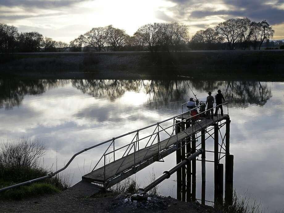 People try to catch fish along the Sacramento River in the San Joaquin-Sacramento River Delta near Courtland (Sacramento County). Photo: Rich Pedroncelli, Associated Press