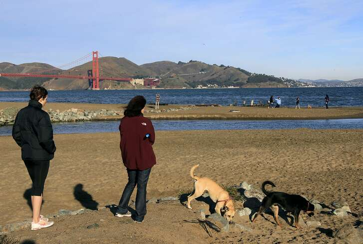 Katie Logan (left) and Janine Darwin watch their dogs Roo and Blackie play on the beach at Crissy Field in San Francisco, Calif. on Friday, Feb. 3, 2012. The GGNRA has just released new procedures for its supplemental environmental document on off-leash dog walking on National Park Service land.