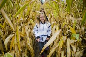 Emerson Booth of Midland, 9, center, and Paige Dehaven of Midland, 9, back, walk through a corn maze with classmates during the 30th annual tour of the Laurenz farm on Tuesday, September 19, 2017 in Wheeler. (Katy Kildee/kkildee@mdn.net)