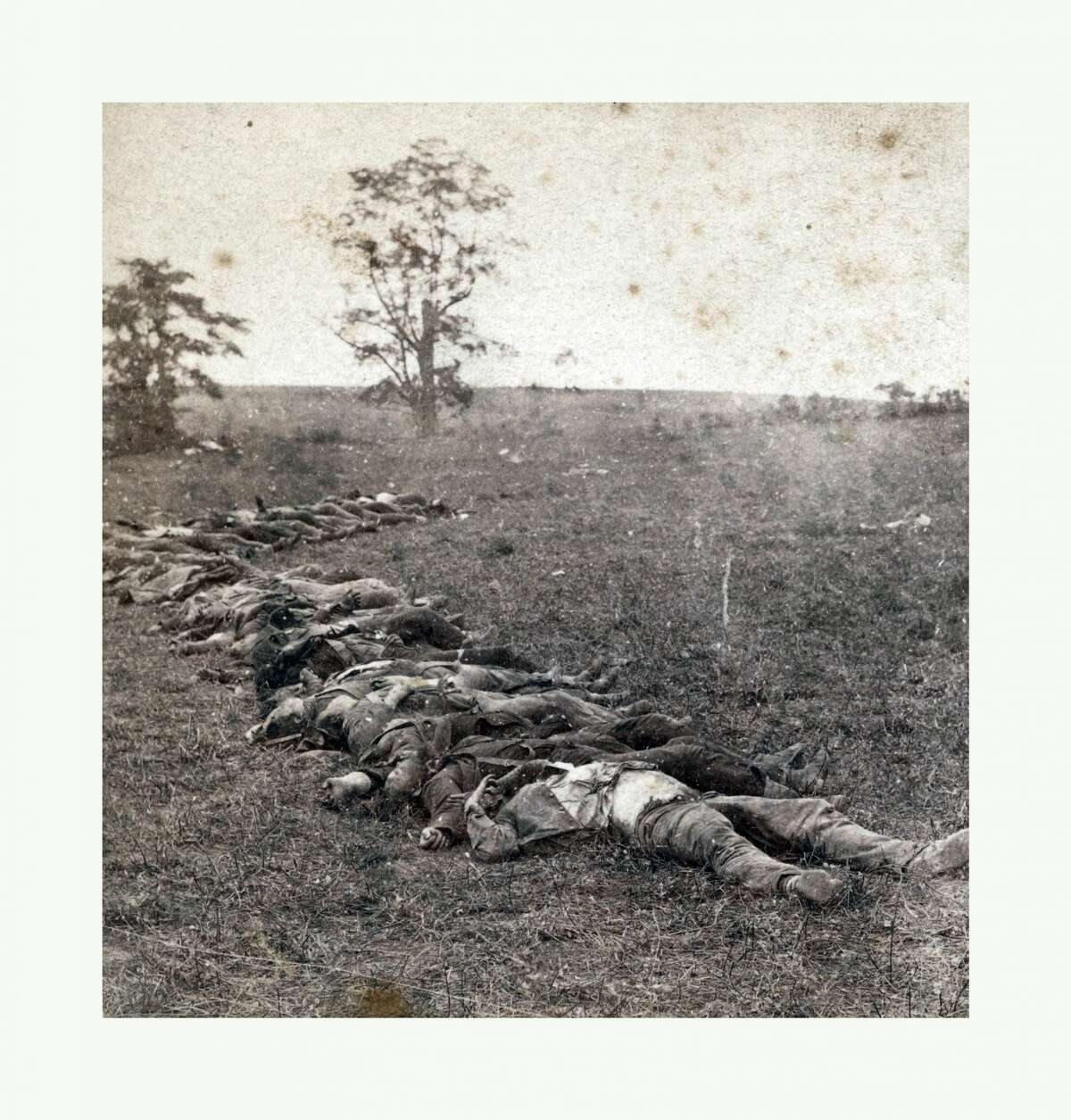 American Civil War: Gathered together for burial after the Battle Of Antietam, dead bodies on the ground. P