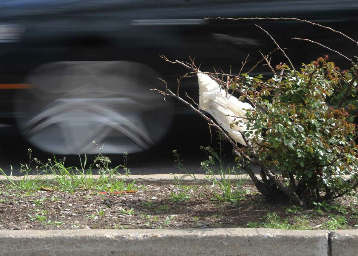 A plastic bag is stuck in a bush near Riverside Commons shopping center in the Riverside section of Greenwich. A resolution to ban single-use plastic bags was withdrawn before presentation to the RTM for more work.
