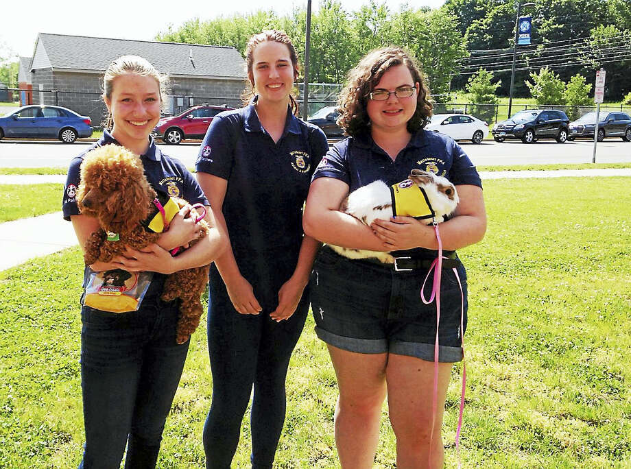 From left, Mattabeset FFA animal ambassadors Karlee Martin (holding Rennie), Melissa Hass and Heather Cashman (with Daphne) are among the vo-ag teams that visit area nursing homes, preschools, libraries and hospitals. Photo: Courtesy Middletown High School