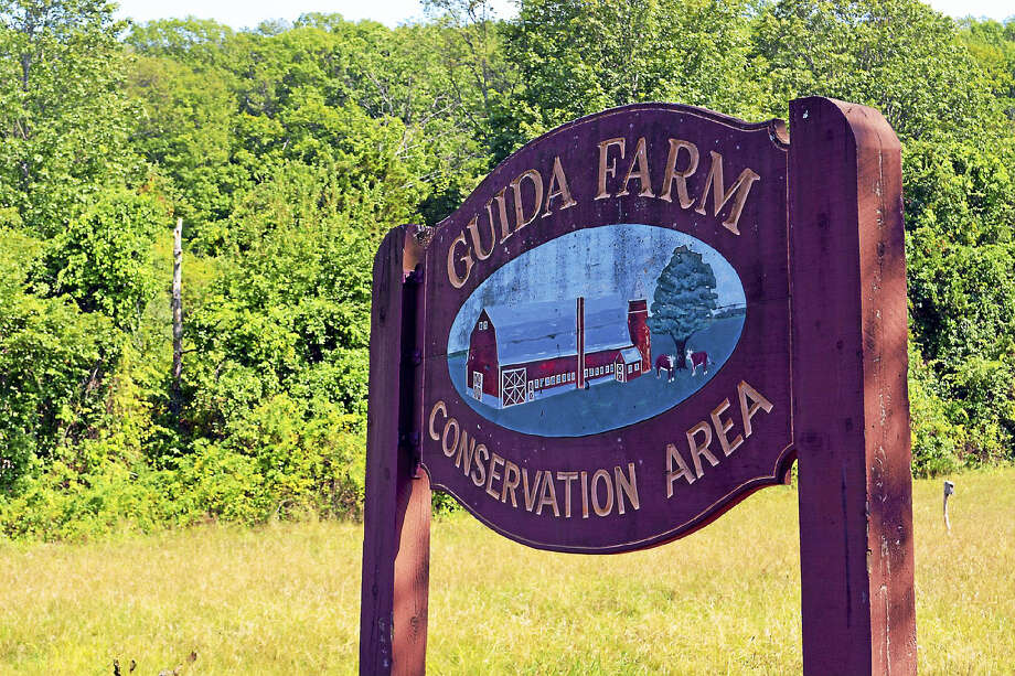 Guida Conservation Area off Round Hill Road Photo: Cassandra Day / Hearst Connecticut Media