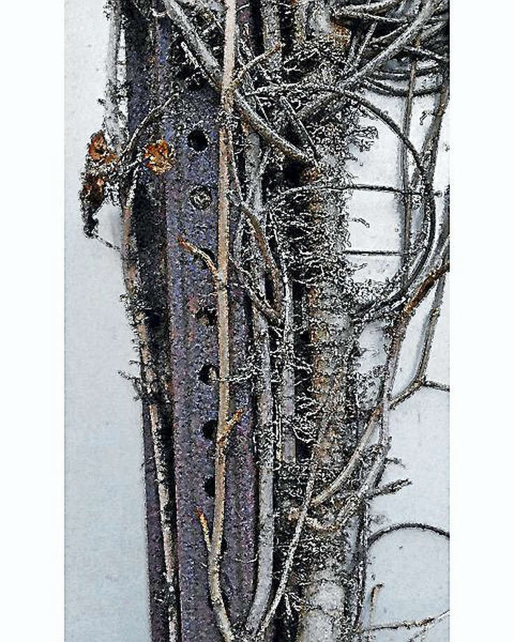 """Steel Vines"" by Deep River Artist Ellen Gaube, is part of the ""Wild and Crazy"" show opening Friday at the Essex Art Association. Photo: Contributed Photos Courtesy Of The Artist"