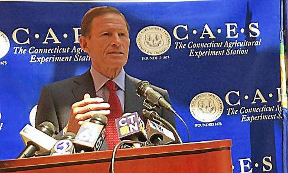 U.S. Sen. Richard Blumenthal Photo: Jack Kramer / Ctnewsjunkie