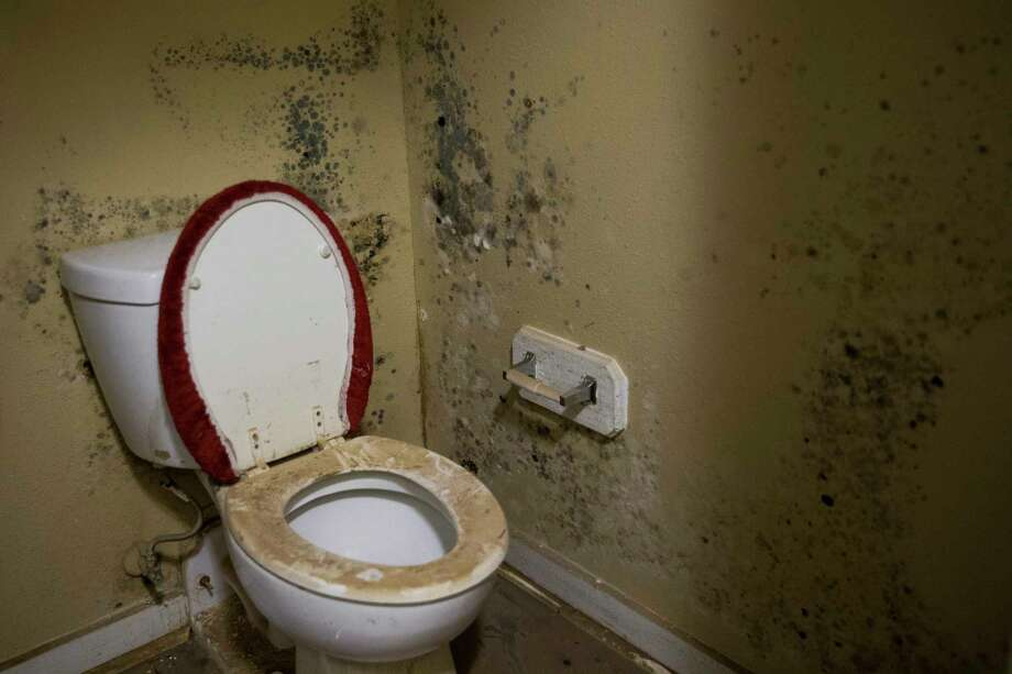 Mold grows in the bathroom of Damien Munyamariza's former apartment at Clayton Homes Tuesday, Sept. 19, 2017 where he and other residents who were flooded during Hurricane Harvey were told that they must pay rent for apartments that were unlivable or lose their subsidies for public housing. Photo: Michael Ciaglo, Houston Chronicle / Michael Ciaglo