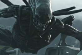 """""""Aliens"""" will be on hand Sunday for the Aliens vs HOUmans event at Warehouse Live."""