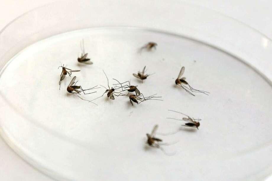 Miss. hits 51 West Nile virus cases so far for 2017