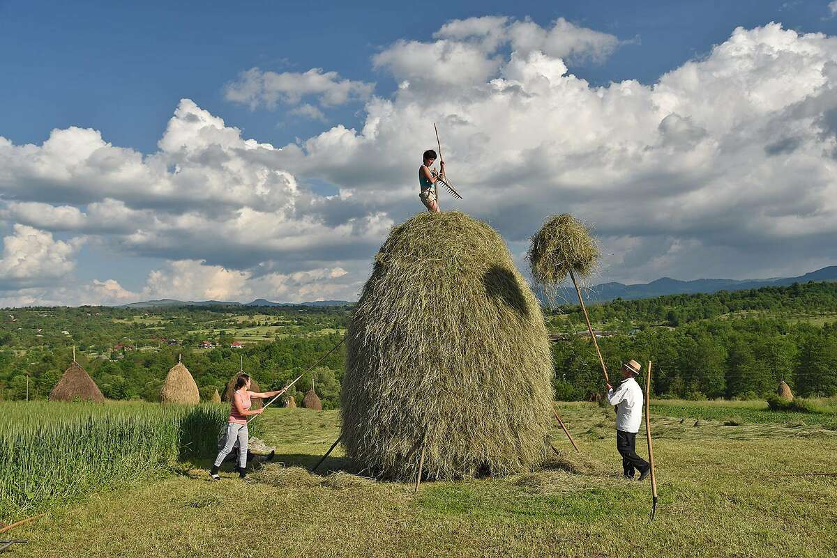 Much of the Romanian countryside, some of it far from the capital, Bucharest, is an old-fashioned world where farmwork is done by hand with traditional tools.