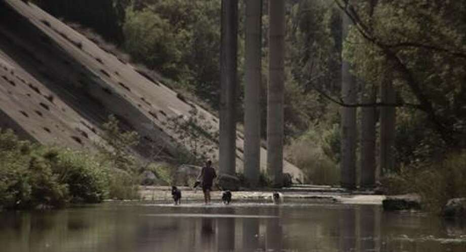 Still from Annie Silverstein (director) and Monique Walton's (producer) previous award winning short film, Skunk.